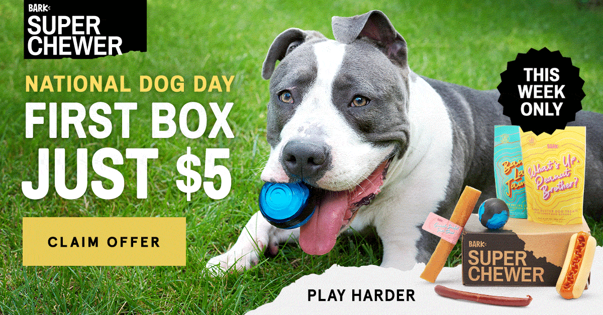 BarkBox Super Chewer Coupon Code – First Box for $5 + Free Bandana