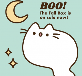 Pusheen Fall 2019 Box Spoiler #1