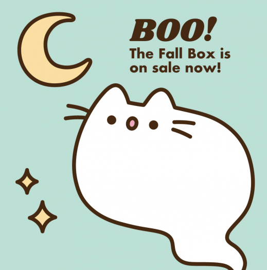 Pusheen Fall 2019 Box Spoiler #2