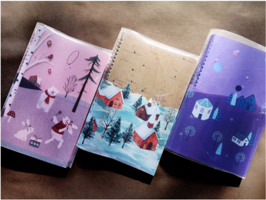 2019 STICKII Advent Calendars - Now Available for Pre-Order!
