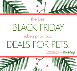 The Top 5 Black Friday Subscription Box Deals for PETS!