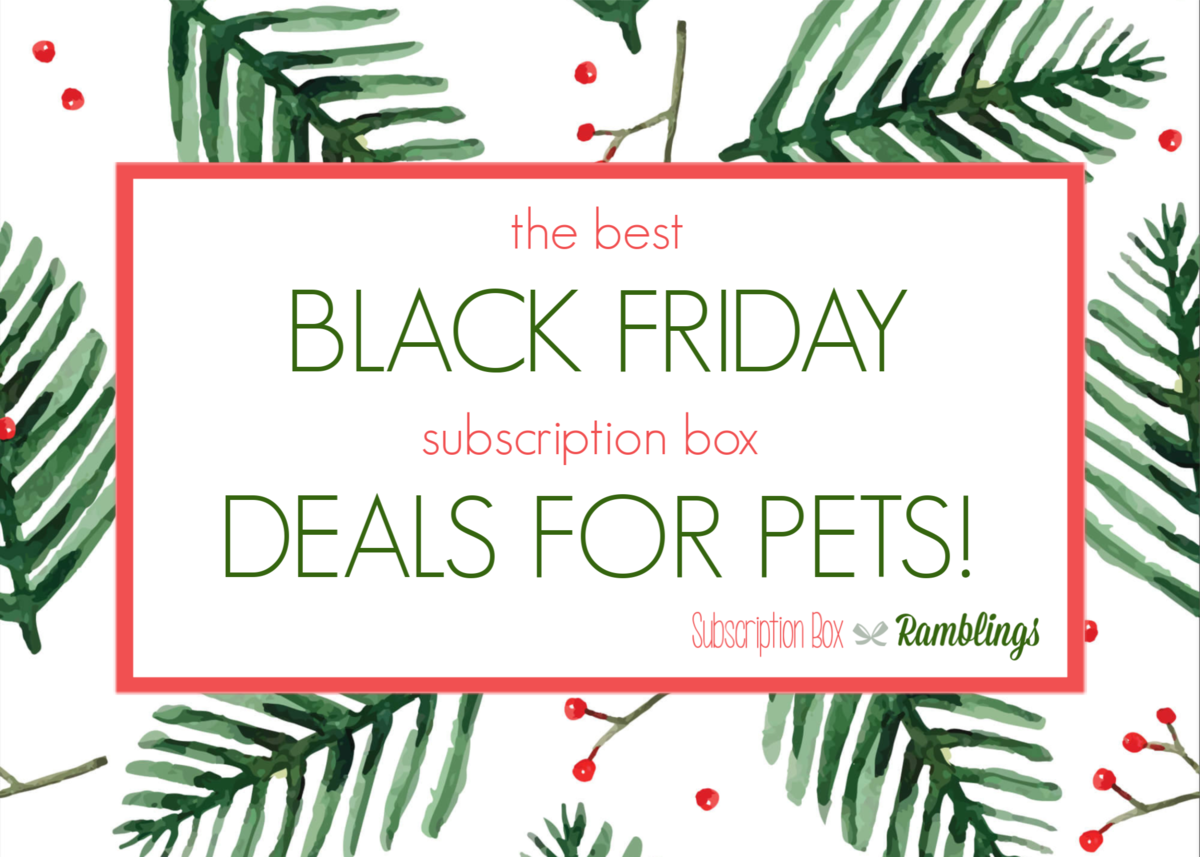 The Best Black Friday Subscription Box for Pets!