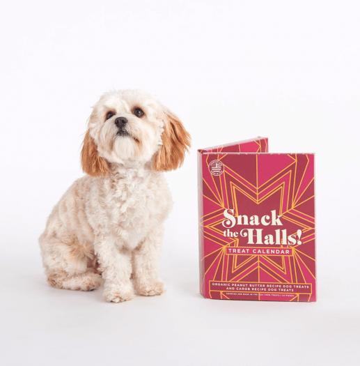 BarkBox Dog Treat Advent Calendar!