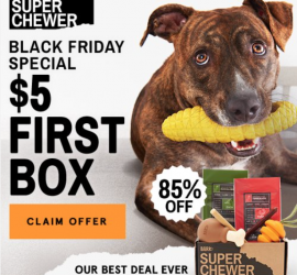 BarkBox Super Chewer Black Friday Coupon Code - First Box for $5