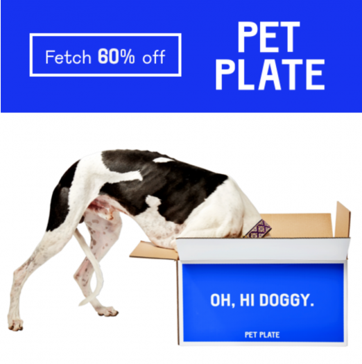 PetPlate Black Friday Coupon – Save 60% Off Your First Box!