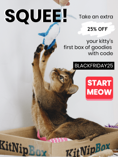 KitNipBox Black Friday Sale – 25% Off First Month!