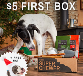 BarkBox Super Chewer Cyber Monday Coupon Code - First Box for $5 + Free Santa Hat!