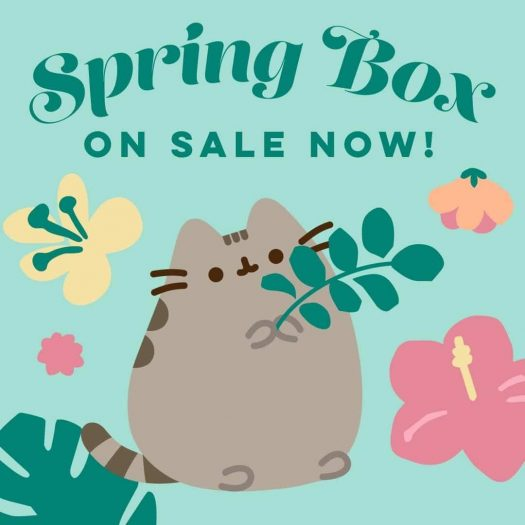 Pusheen Spring 2020 Box – On Sale Now + Spoiler #1
