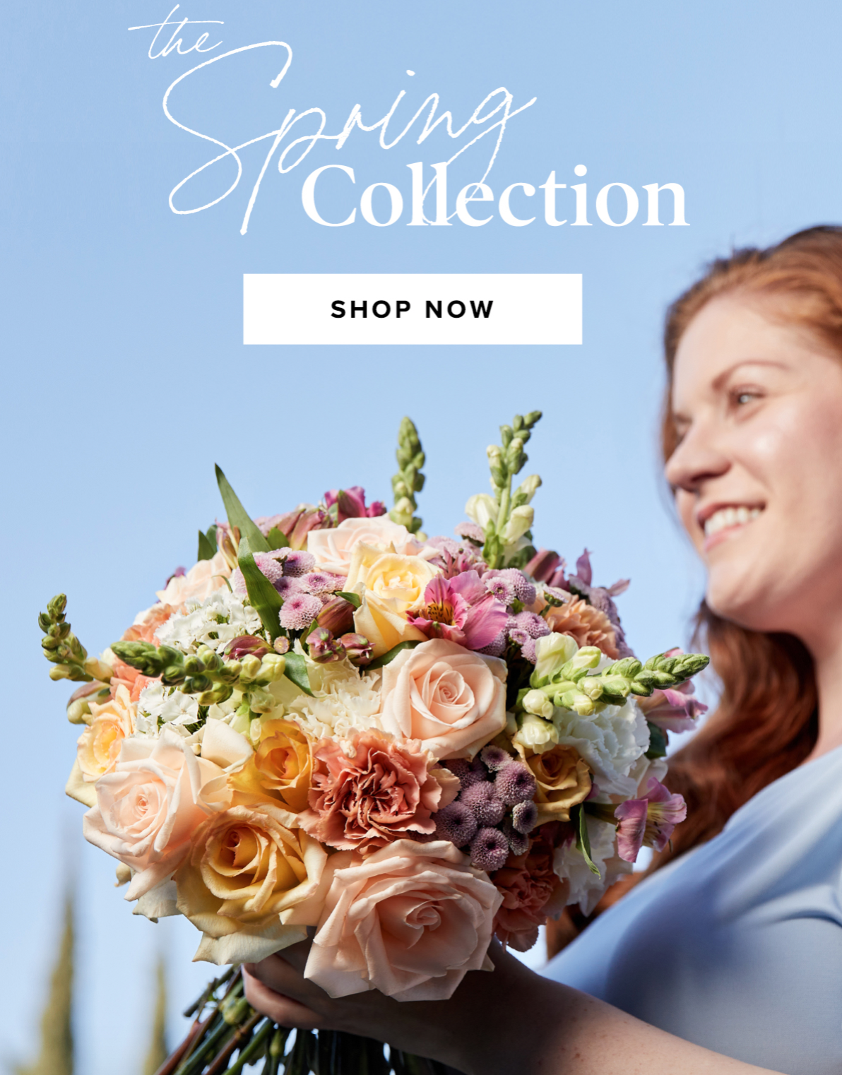 The Bouqs Spring Collection Sale – 30% Off Sitewide!