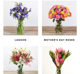 The Bouqs Mothers Day Sale - Double Your Bouq