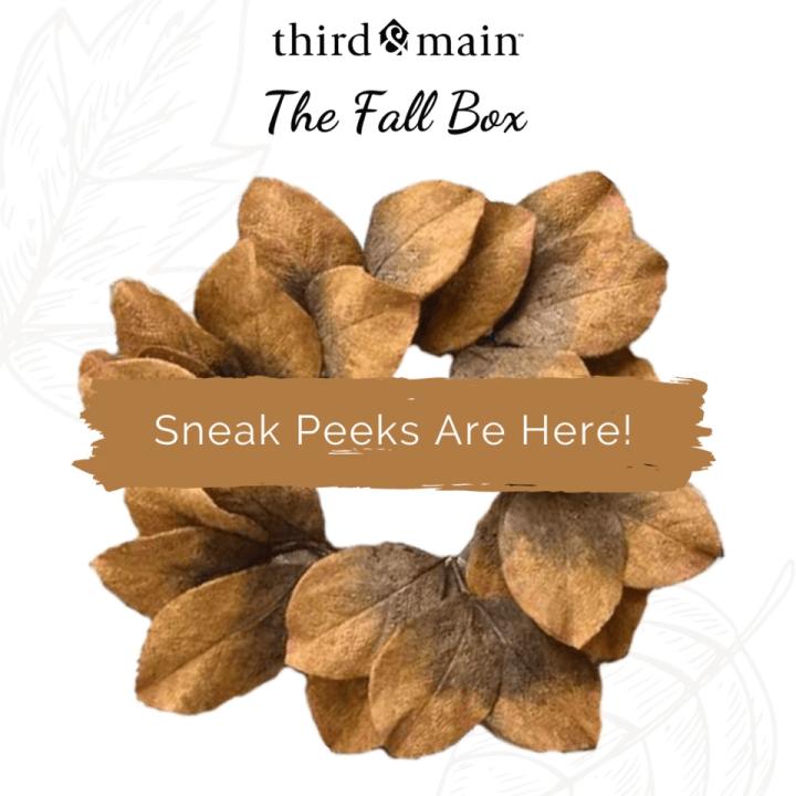 Third & Main Fall 2020 Box Spoilers