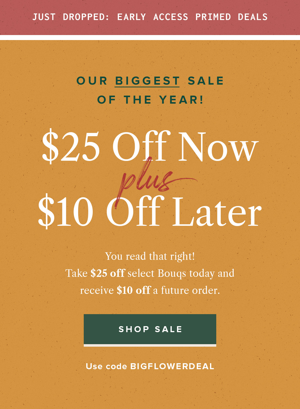 The Bouqs Biggest Sale of the Year!