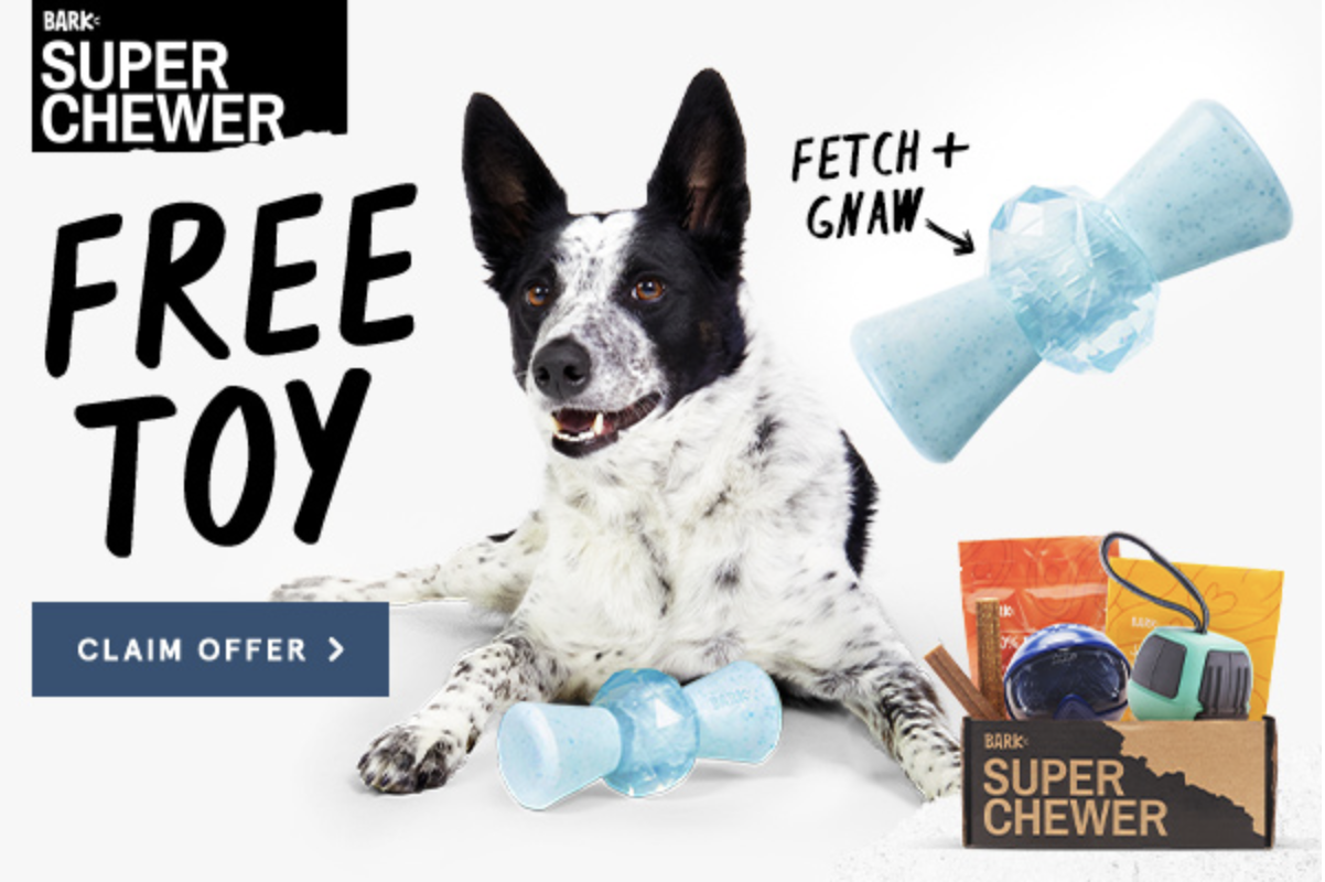 BarkBox Super Chewer Coupon Code – FREE Ice Breaker Toy