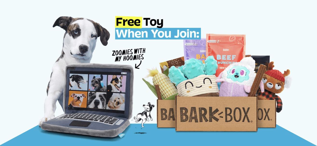 BarkBox Coupon Code – Free FREE Zoom Meeting Laptop Plush Toy!