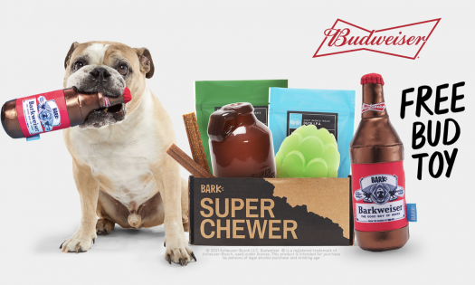 BarkBox Super Chewer Coupon Code – FREE Treat Dispensing Toy