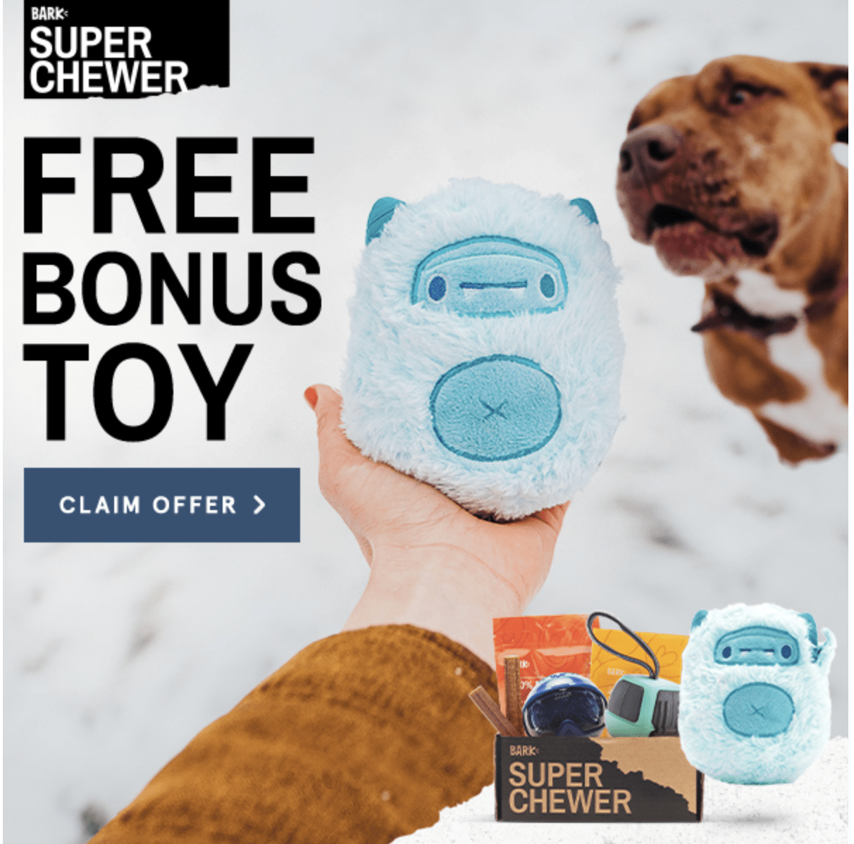 BarkBox Super Chewer Coupon Code – FREE Ice Beast Toy