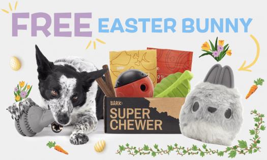 BarkBox Super Chewer Coupon Code – FREE Curse Collar!