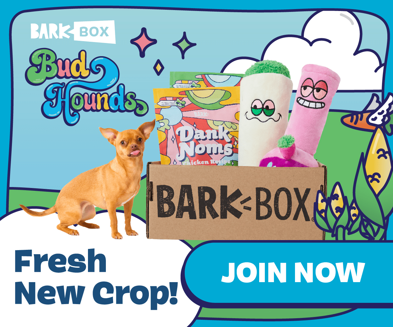 BarkBox- Start Your Subscription With The Limited Edition 420 Box