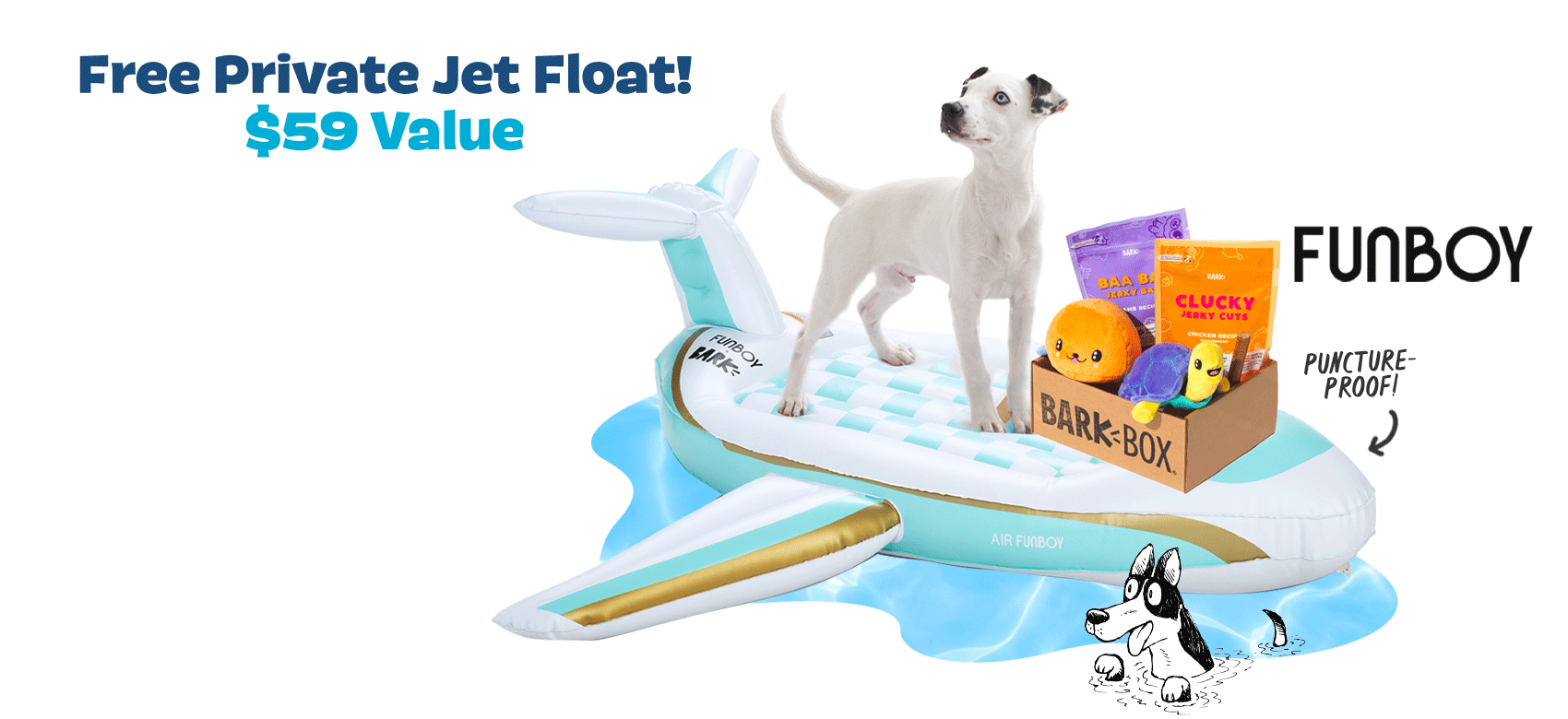 BarkBox Coupon Code – Free FUNBOY Pool Float!