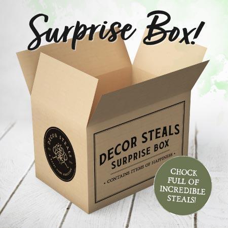Decor Steals Surprise Box – On Sale Now!
