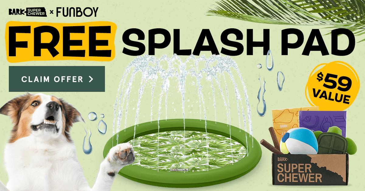 BarkBox Coupon Code: Free FUNBOY Splash Pad!