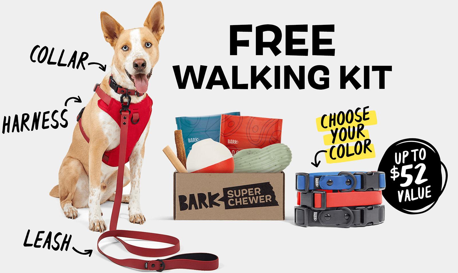 BarkBox Super Chewer Coupon Code – FREE Dog Walk Pack