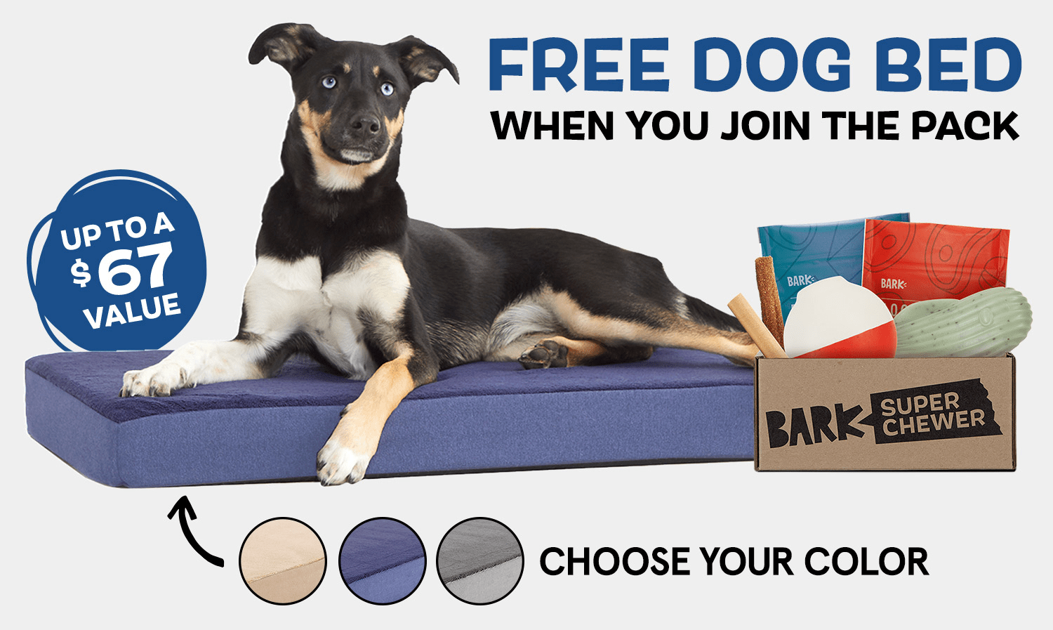 BarkBox Super Chewer Coupon Code – FREE Dog Bed (up to $67 value)