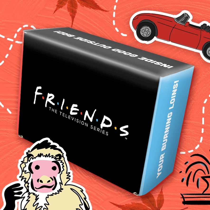 Friends Subscription Box Fall 2021 – Spoiler #2