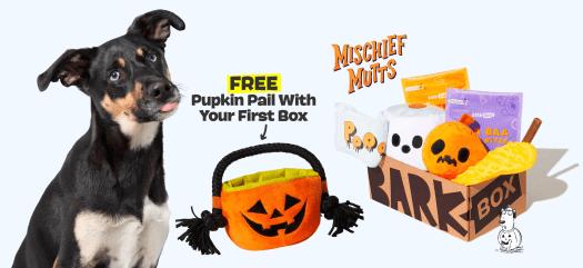 BarkBox Coupon Code: FREE Pumpkin Pail Toy